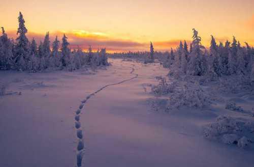 в якутии систематизируют законодательство о правах коренных народов севера